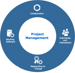 consultancy project management